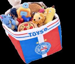 Caixa de Brinquedo Escudo