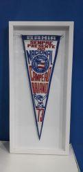 Flamula Campeão 1973